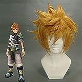 FLYAND Kingdom Hearts Roxas Perücke Ventus Cosplay Perücke 30 cm...