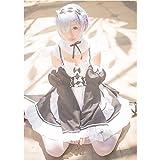 GODNECE Cosplay Uniform Anime, Rem Ram Cosplay Dienstmädchen Outfit...