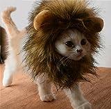 Bello Luna Süße Löwenkostüm, Löwenmähne mit Ohren für Katzen,...