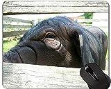 Tier Art Mousepad, Chinesisches Schwein Maske Neujahr des Schweins...