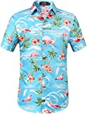 SSLR Herren Hemd Hawaiihemd 3D Gedruckt Flamingos Kurzarm Aloha...